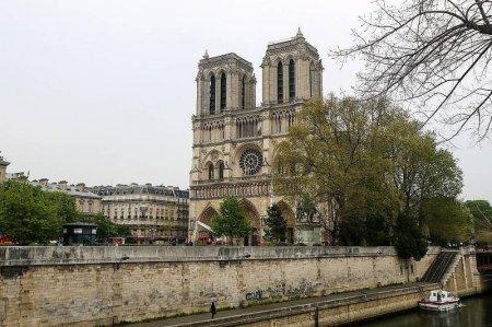 Француз депутаттары Нотр-Дам шіркеуін қалпына келтіру туралы заң жобасын қабылдады