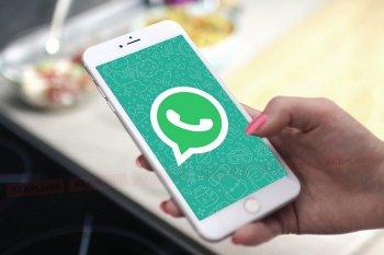 WhatsApp-та жаңа қызмет пайда болды